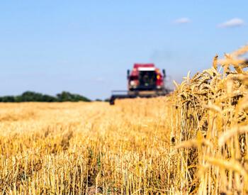 Бизнес-план инвестиционного проекта: «Строительство агропромышленного комплекса в Магаданской области»